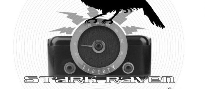 Stark Raven camera logo